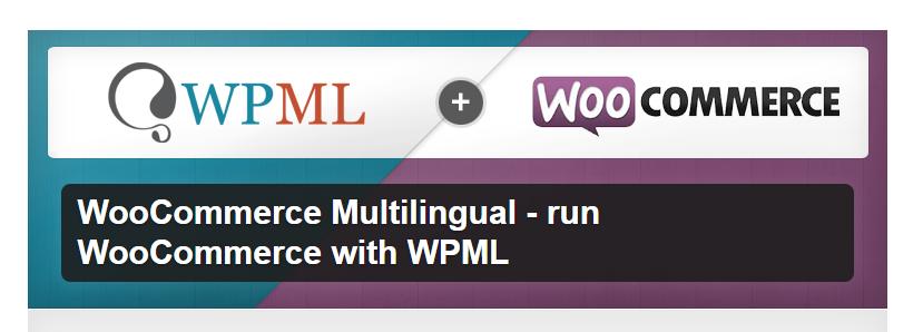 Multilingual plugin